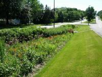 Bioswale in median of road infrastructure in Wisconsin for stormwater management